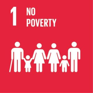 SDG Goal 1 No Poverty