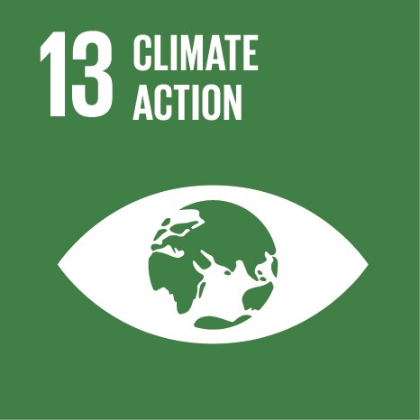 SDG 13 Climate Action icon