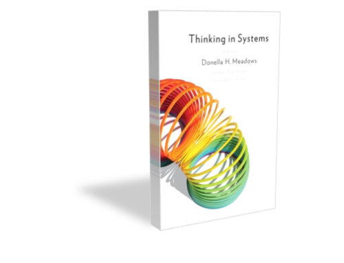 One Book to Save the World-Thinking In Systems by Donella Meadows
